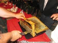 Οι κερύθρες με το καθαρό χρυσιώτικο μέλι, προσφορά του Γιώργου Σ. Καρανίκα